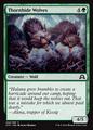 Thornhide Wolves SOI