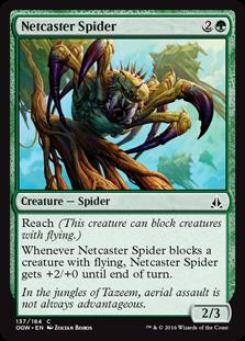 Netcaster Spider OGW