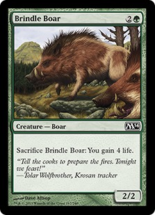 Brindle Boar M14