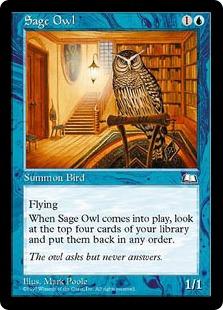 Sage Owl WL