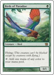 File:Birds of Paradise 8ED.jpg