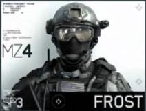 Mw3 frost