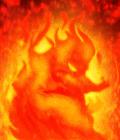 Firequacker