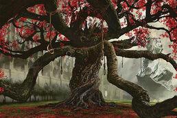 Stf162 tree