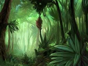 File:Jungle2.jpg