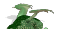 Jackpteryx