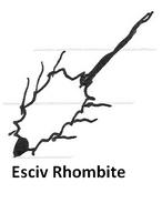 Esciv rhombite