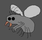 Silicis bug