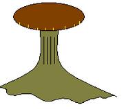 Fanisid shroom