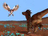 Avio vs Raptor