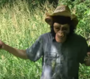 Mumkey's Gaming Expedition