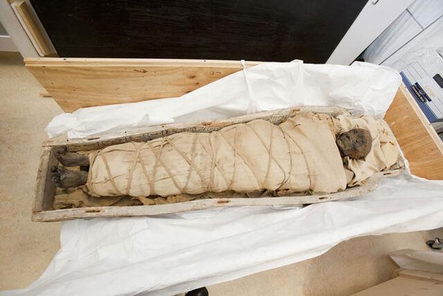 File:Ancient-egyptian-mummy-1-0.jpg