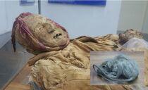 Mummy-guano