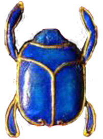 File:Insect.jpg