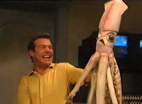 Squid MuppetsTonight207