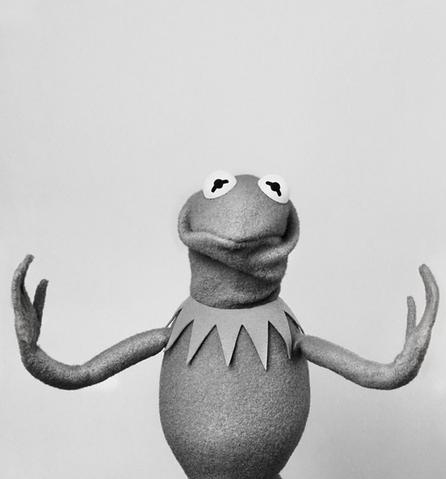 File:SüddeutscheZeitung-Kermit-02-HowIsShe.png