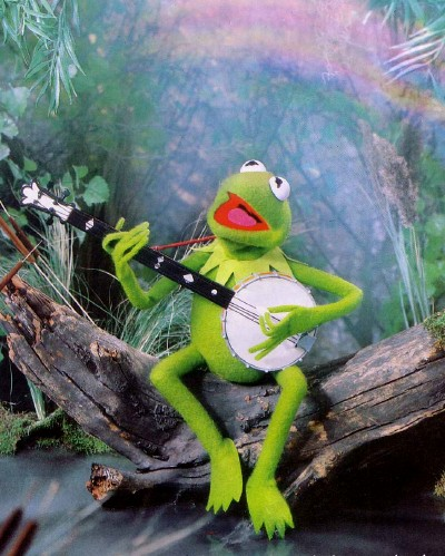 Kermit the frog playing banjo in a swamp