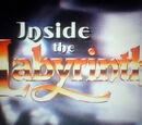 Inside the Labyrinth
