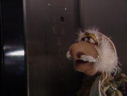 Matt elevator