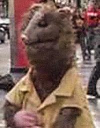 Lester Possum