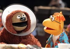 The-muppets-abc-gallery-5