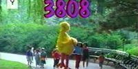 Episode 3808
