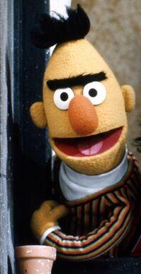 Bert season 6