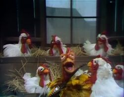 Song.cockadoodleblues