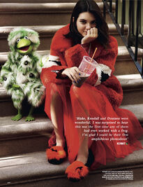 Love magazine Kermit and Kendall