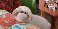 Baab the Sheep