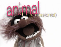 Muppetism Animal percussionist