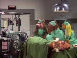 211 vets hospital