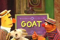 Goat (Sesame Street)