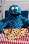 Gourmand cookie monster chocolate chip
