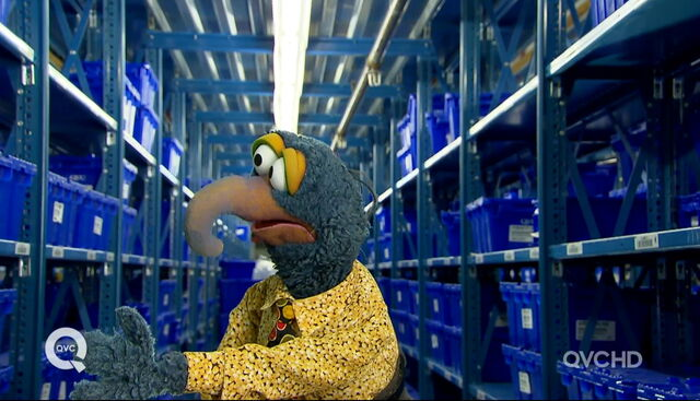 File:Qvc gonzo stockroom.jpg