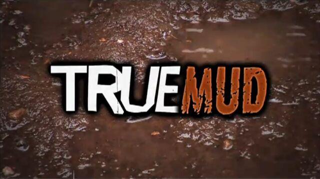 File:TrueMud01.jpg