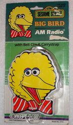 Concept 2000 big bird am radio