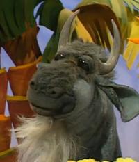 Frankie the Wildebeest
