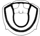 Waldorfstatleri-b