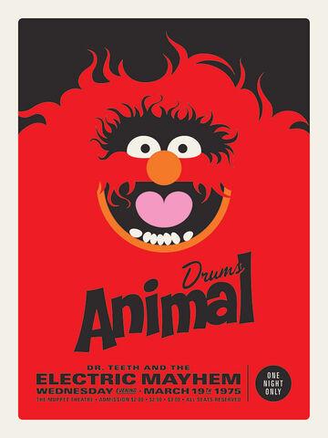 File:Acme Animal 18x24.jpg