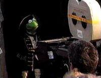 Kermit Treasure