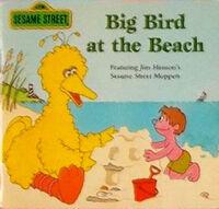 Big Bird at the Beach