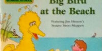 Big Bird at the Beach
