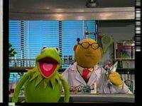 Muppet Madness