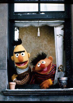 Ernie bert window