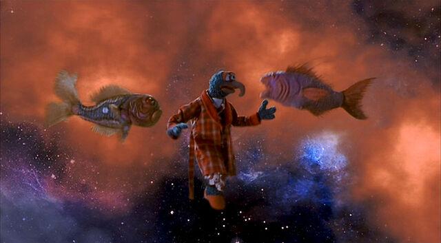 File:MFS-Gonzo-and-CosmicFish.jpg