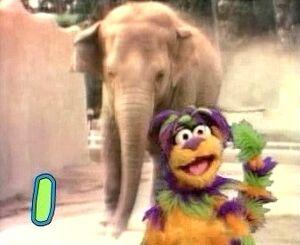 Tingo and the elephant