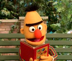 BertBook-Senses