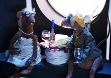 Yolanda and Rizzo drinking in M15