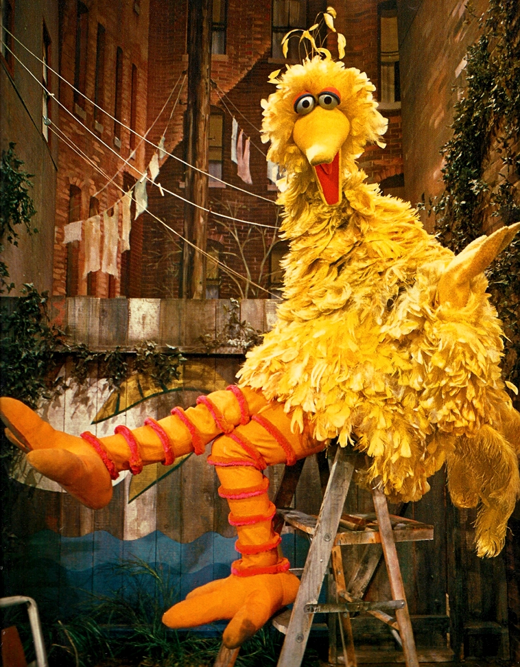 Kami in addition Miss Piggy 27s karate chops together with Marshalling On With Sandra Bernhard further Big Bird Through the Years together with Nanco. on oscar sesame street doll